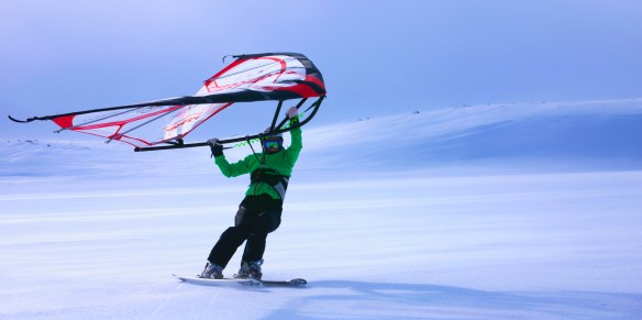The Kitewing - great toy when it is to windy for kiting.
